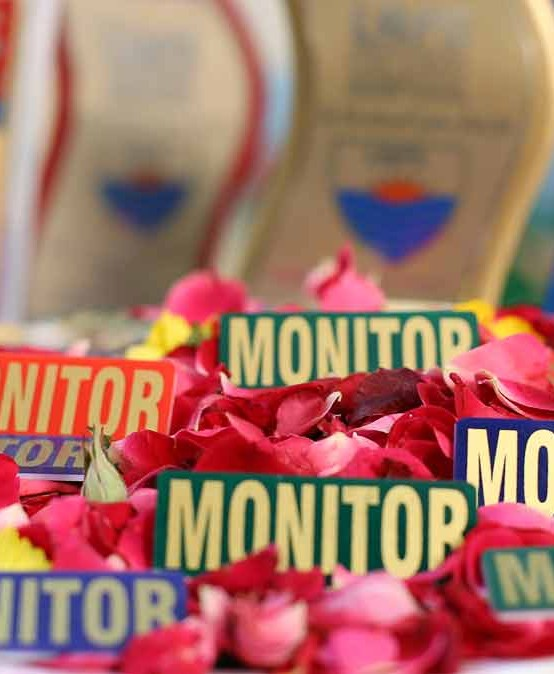 Monitor Badge Ceremony